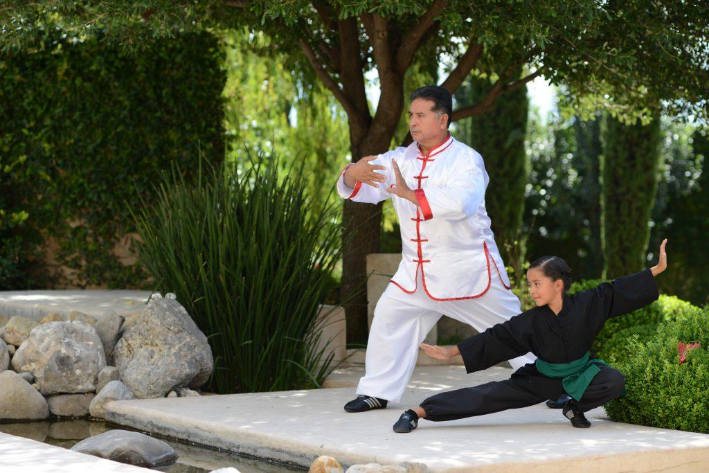 kung fu avemed